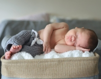 baby max-1-2